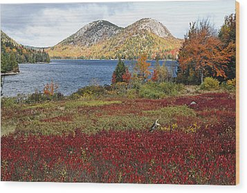 Jordan Pond And The Bubbles Wood Print by George Oze