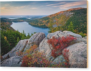 Jordan Pond Sunrise  Wood Print by Susan Cole Kelly
