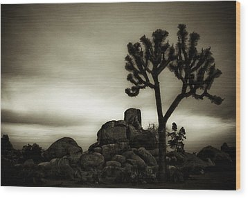 Wood Print featuring the photograph Joshua Morning by Tom Vaughan