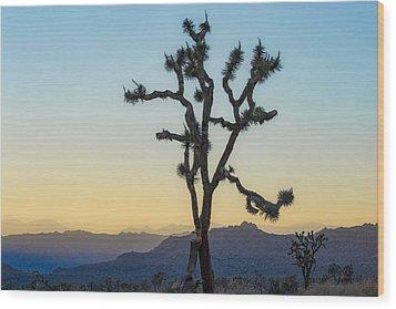 Joshua Tree Wood Print