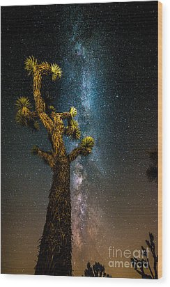 Joshua Tree And Milky Way Wood Print