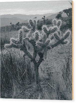 Joshua Tree Cactus Wood Print