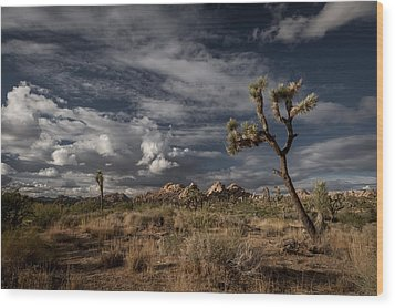 Joshua Tree Fantasy Wood Print