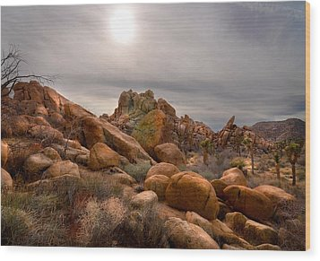Joshua Tree National Monument Wood Print by Kevin Felts