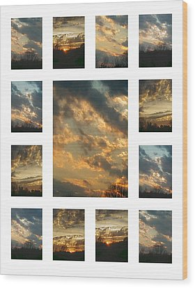 Wood Print featuring the photograph Joy In The Skies  by Robin Coaker