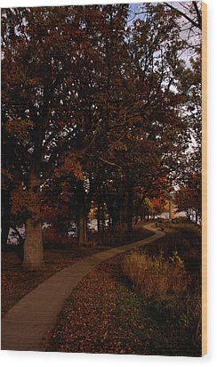 Julien Dubuque Monument Wood Print