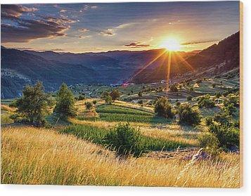 July Sun Wood Print by Evgeni Dinev