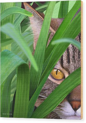 Jungle Cat Wood Print by Bob Nolin