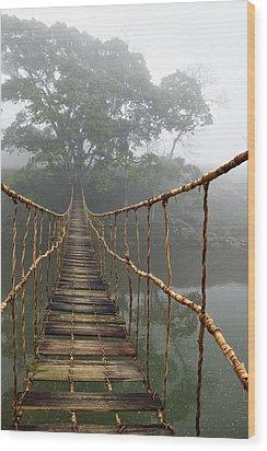 Jungle Journey 2 Wood Print