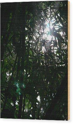 Jungle Light Wood Print by Brad Scott