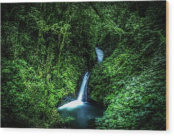 Wood Print featuring the photograph Jungle Waterfall by Nicklas Gustafsson