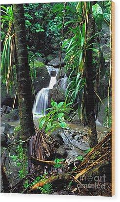 Jungle Waterfall Wood Print by Thomas R Fletcher