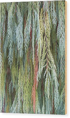 Juniper Leaves - Shades Of Green Wood Print by Ben and Raisa Gertsberg