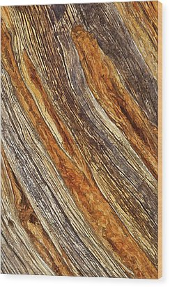 Juniper Texture Wood Print by ABeautifulSky Photography