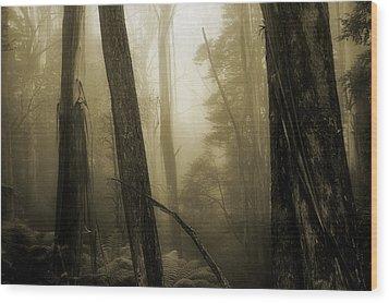 Jurassic Memories Wood Print by Mihai Florea
