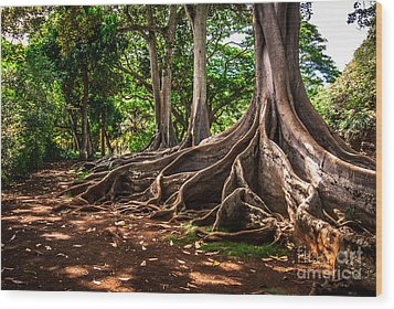 Jurassic Park Tree Group Wood Print