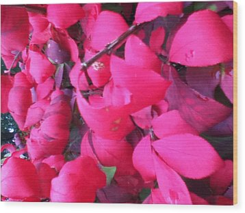 Just Red/pink Wood Print