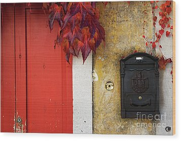 Wood Print featuring the photograph Just Red by Yuri Santin