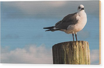 Just Standing On The Dock Wood Print by Phillip Burrow