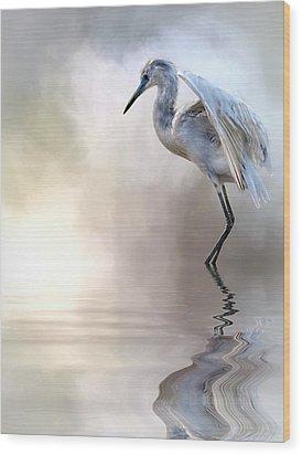 Juvenile Heron Wood Print by Cyndy Doty