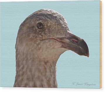 Juvenile Western Gull Bird Wood Print by K L Kingston