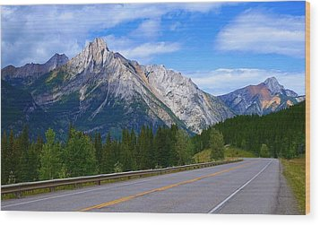 Kananaskis Country Wood Print by Heather Vopni