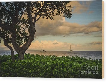 Wood Print featuring the photograph Ka'anapali Plumeria Tree by Kelly Wade