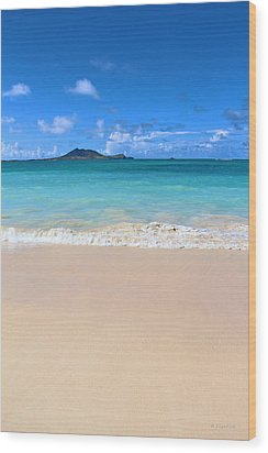 Kailua Beach Hawaii Wood Print by Kerri Ligatich