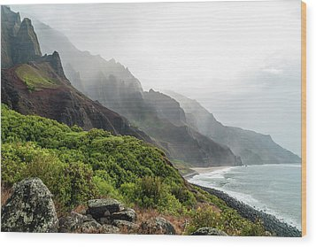 Kalalau Beach Wood Print by Brian Harig