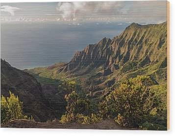 Kalalau Valley 3 Wood Print by Brian Harig