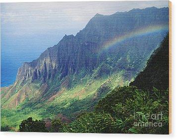 Kalalau Valley Viewpoint Wood Print by Rita Ariyoshi - Printscapes