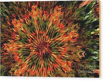 Kaleidoscope 1 Wood Print by Jean Bernard Roussilhe
