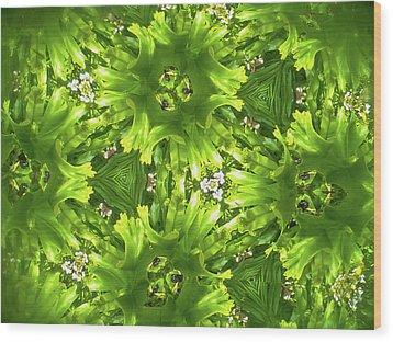 Kaleidoscope Flower Wood Print