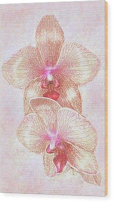 Kaleidoscope Orchid  Wood Print by Jane Schnetlage