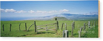 Kamuela Pasture Wood Print by David Cornwell/First Light Pictures, Inc - Printscapes