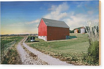 Wood Print featuring the photograph Kansas Landscape II by Steve Karol