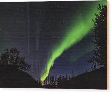 Kantishna Northern Lights In Denali National Park Wood Print by Brenda Jacobs