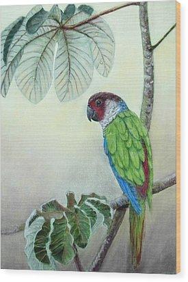 Wood Print featuring the painting Kasanga Bajo El  Guarumo by Ceci Watson