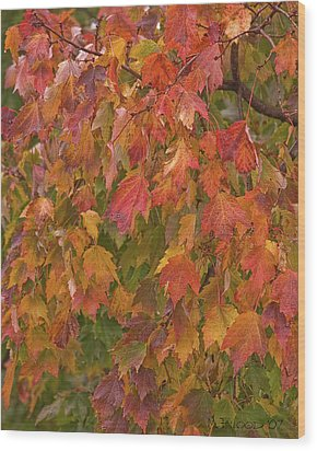 Kates Leaves Wood Print