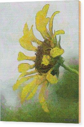 Kate's Sunflower Wood Print by Jeff Kolker