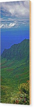 Kauai  Napali Coast State Wilderness Park Wood Print