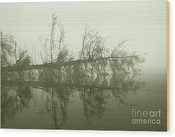 Wood Print featuring the photograph Kayak Trap II by Jan Piller