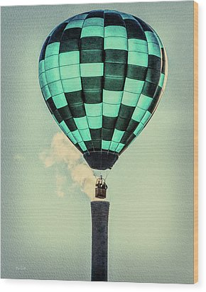 Keeping Warm As You Float Wood Print by Bob Orsillo