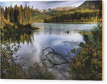 Kenai River In Fall Wood Print