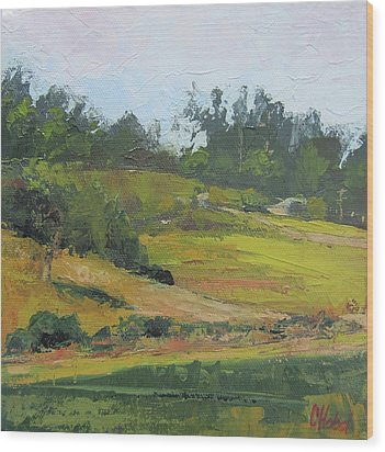 Wood Print featuring the painting Kenilworth Hills Queensland Australia by Chris Hobel