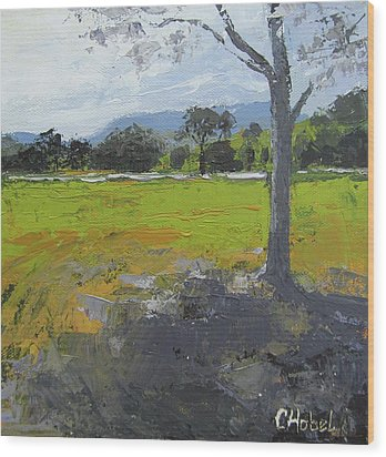 Wood Print featuring the painting Kenilworth Landscape Queensland Australia by Chris Hobel