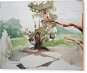 Kennedy Meadows Tree Wood Print by Amy Bernays
