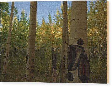 Kenosha Pass Wood Print