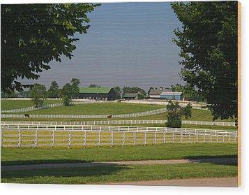 Kentucky Horse Park Wood Print by Kathryn Meyer