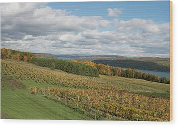 Wood Print featuring the photograph Keuka In Autumn by Joshua House